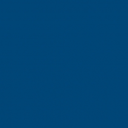 Линолеум Спортивный Tarkett Omnisports R65 Royal Blue 2 м рулон